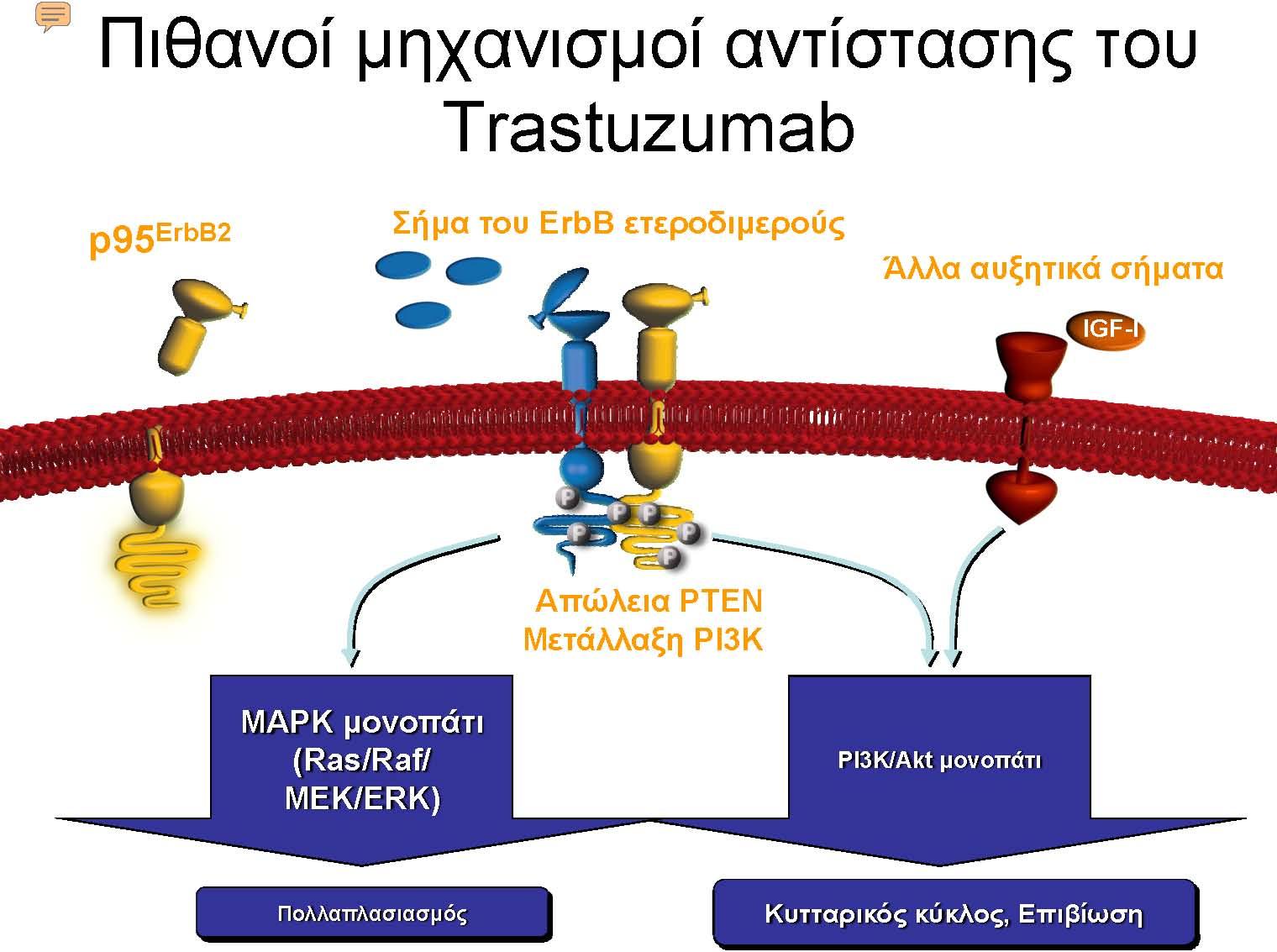 Trastuzumab_Page_1
