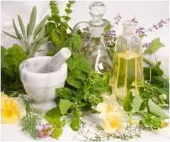 Βοτανοθεραπεία για τις ασθένειες του δέρματος