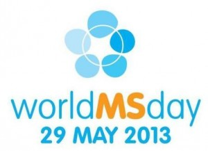 WMS Day 2013 (2)