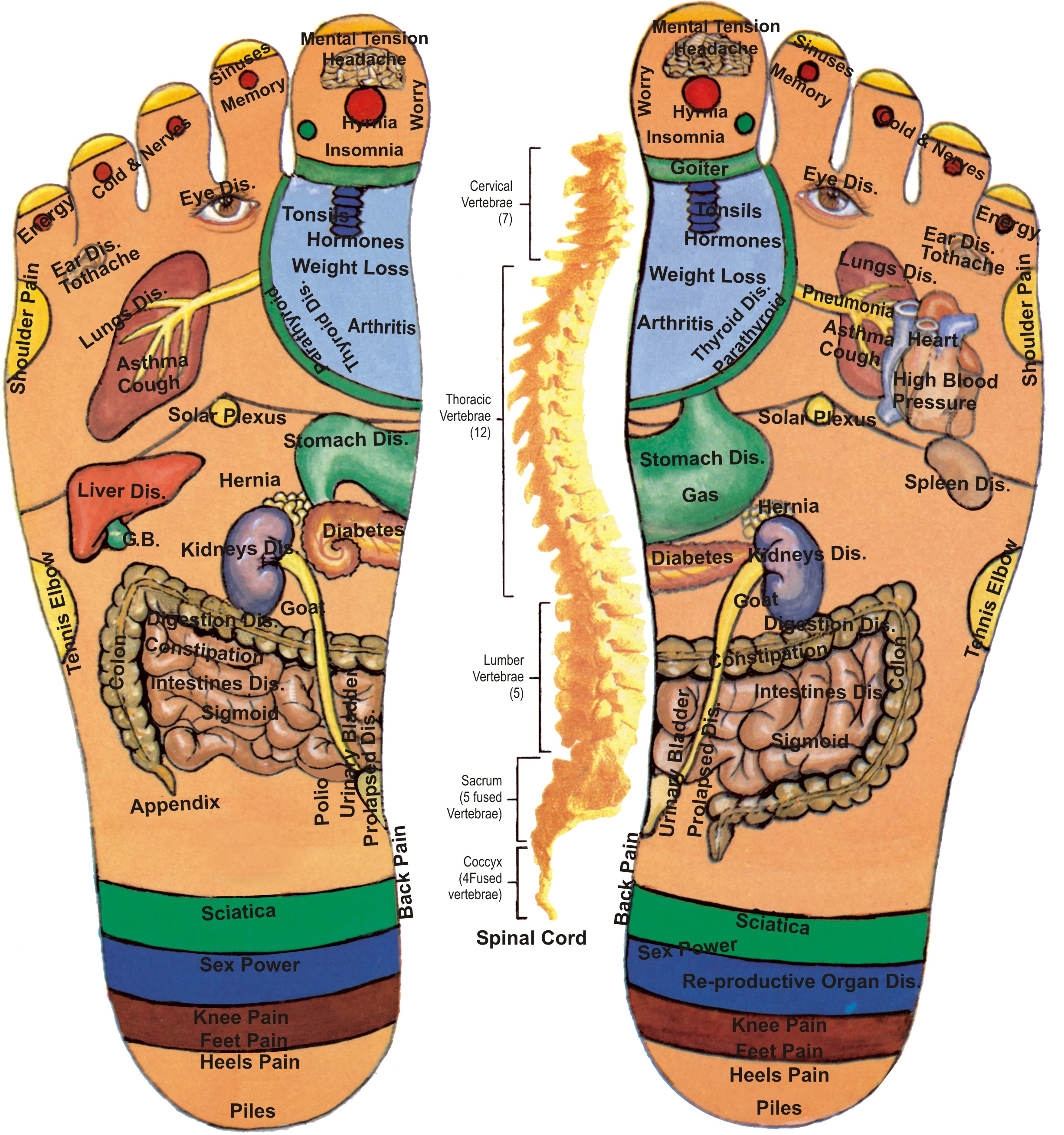 Pressure Points For A Foot Massage.