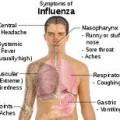 gripi0