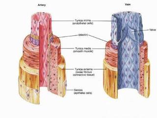 Μετεγχειρητική αιμορραγία