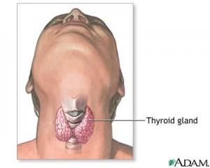 thyreoeidis