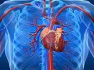 7 σημάδια που δείχνουν καρδιοπάθεια