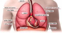 ΧΑΠ η νόσος των καπνιστών