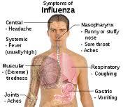 Εποχική γρίπη: Οδηγίες για τα μέλη πληρώματος των αεροσκαφών