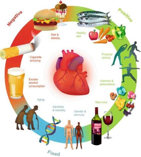 Βελτίωση δυσλιπιδαιμίας - πρόληψη καρδιαγγειακής νόσου