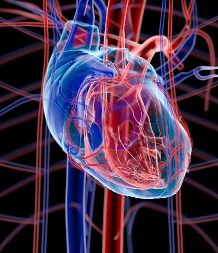 """Συνέδριο Ευρωπαϊκής Καρδιολογικής Εταιρείας """"ESC Congress 2021 – The Digital Experience"""""""